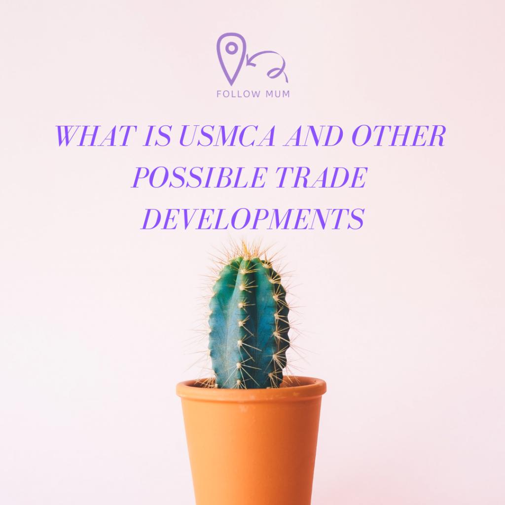 USMCA, Engineering Blog, Possible Trade Developments